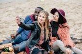 Happy people taking selfie at picnic