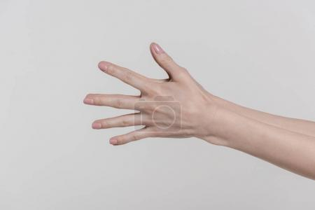 Photo for Cropped view of female hands gesturing isolated on grey - Royalty Free Image