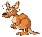 Kangaroo with dizzy face