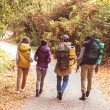Back view of young backpackers walking on road in ...