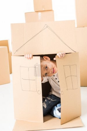 Foto de Cute little boy sittling inside of cardboard box with house drawed on it isolated on white - Imagen libre de derechos
