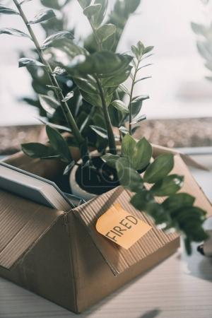 Photo for Cardboard box with books plant and sticky note with word fired in office - Royalty Free Image