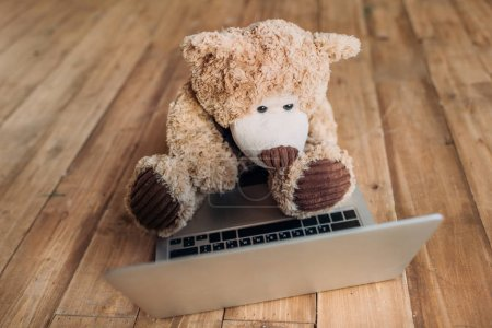 teddy bear and laptop