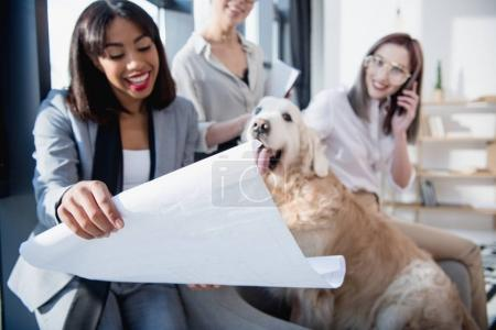 multiethnic businesswomen showing blueprint to dog