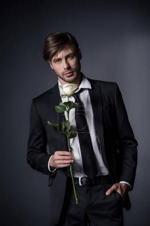 Photo for Portrait of stylish man in suit holding white rose and looking at camera isolated on black - Royalty Free Image