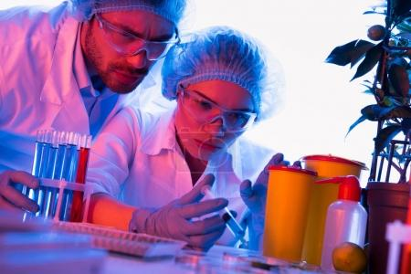 Photo for Scientists at chemical laboratory during work - Royalty Free Image