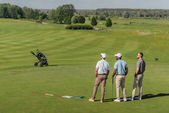 Professional players standing on golf pitch