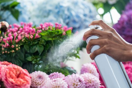 Florist spraying flowers