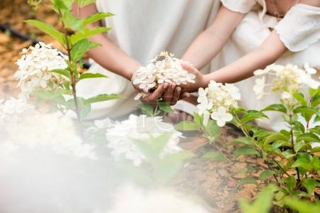 Hands touching blooming flowers