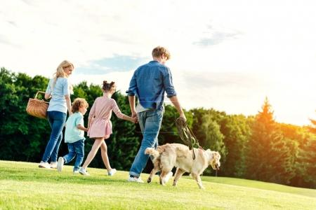 Photo for Back view of family with pet and picnic basket walking on green lawn in park - Royalty Free Image