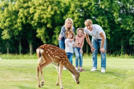 Photo pour Heureuse jeune famille avec deux enfants regardant brune pâturage de cerfs dans le parc - image libre de droit