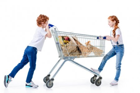 Redhead siblings with shopping trolley