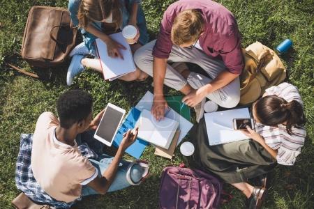 Photo pour Vue aérienne de jeunes étudiants multiethniques étudient ensemble tout en étant assis sur l'herbe - image libre de droit