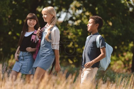 multiethnic teens walking in park