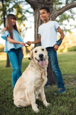 multiethnic teens with dog