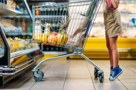 kid with shopping cart