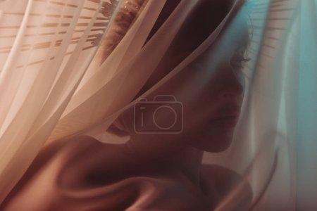 sensual woman behind the veil