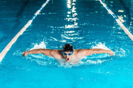 Photo for Young professional swimmer in competition swimming pool - Royalty Free Image