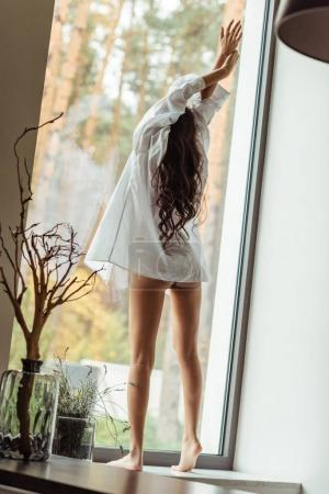 Photo for Back view of woman in white shirt stretching on windowsill in morning - Royalty Free Image