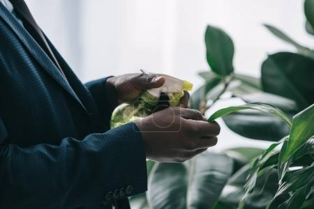 cropped shot of businessman watering leaves of plant at office