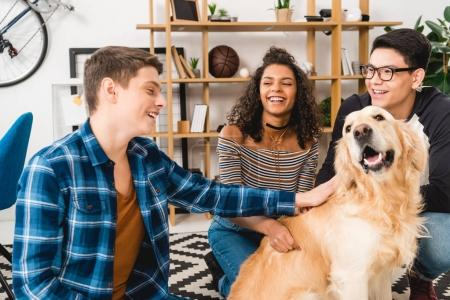 smiling multicultural teens palming dog at home