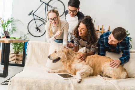 happy multiethnic teenagers palming dog