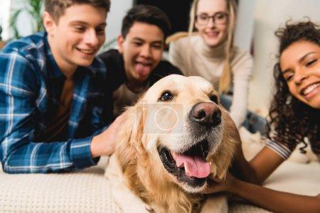 happy multiethnic teenagers palming dog