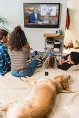"""Постер, картина, фотообои """"подростки, смотреть новости и лежа на кровати собаки"""""""
