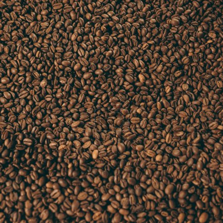 full frame of heap of roasted coffee beans