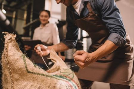 Photo for Partial view of worker tying sack bag with coffee beans - Royalty Free Image