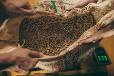 Photo for Cropped shot of workers holding sack bag with coffee beans together - Royalty Free Image