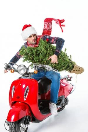 man in santa hat and scarf holding christmas tree while riding red scooter, isolated on white