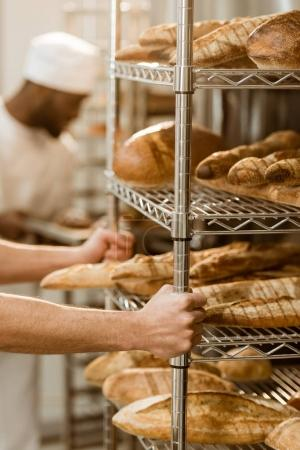 Photo for Cropped shot of baker holding shelves with fresh bread loaves at baking manufacture - Royalty Free Image