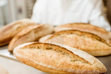 Photo for Baker holding tray with fresh loaves of bread - Royalty Free Image