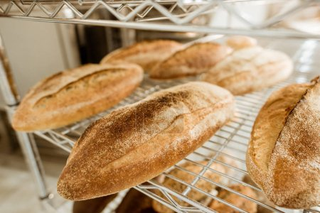 shelves with tasty freshly baked bread on baking manufacture