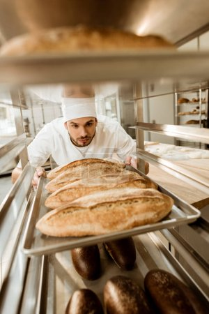 handsome baker putting trays of fresh bread on stand at baking manufacture