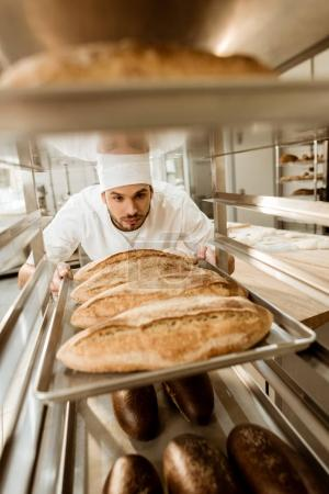 Photo for Handsome baker putting trays of fresh bread on stand at baking manufacture - Royalty Free Image