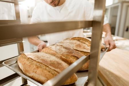 Photo pour Plan recadré de boulanger mettre des plateaux de pain frais sur pied à la fabrication de cuisson - image libre de droit