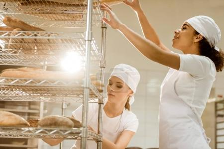 female bakers putting fresh bread loaves on shelves at baking manufacture