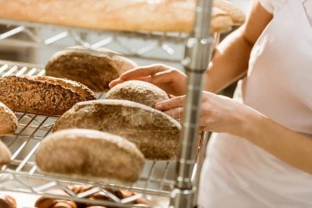 Photo pour Plan recadré du boulanger femelle faisant l'examen des pains fraîchement cuits sur la fabrication de la cuisson - image libre de droit