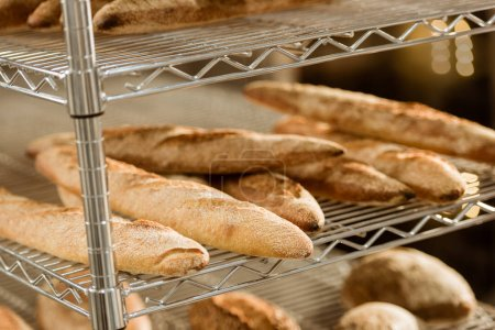 shelves with freshly baked bread on baking manufacture