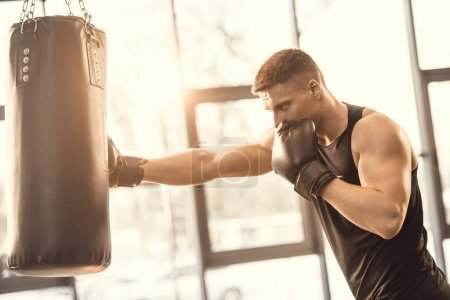muscular young boxer training with punching bag in gym