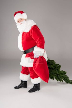 Santa Claus carrying fir tree and sack