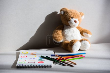 Teddy bear and drawing album