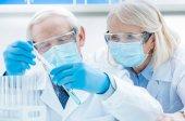 senior chemists with test tubes