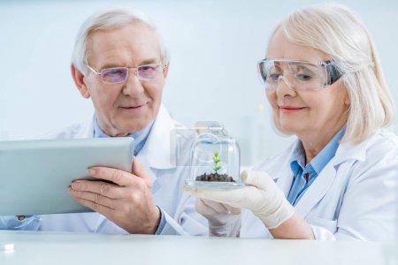 Senior couple of scientists