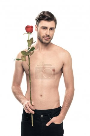 Handsome man with rose flower