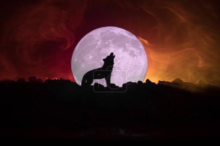 Photo pour Silhouette de loup hurlant contre foncé aux tons fond brumeux et pleine lune ou loup en silhouette hurlant à la pleine lune. Concept d'horreur Halloween. Mise au point sélective - image libre de droit