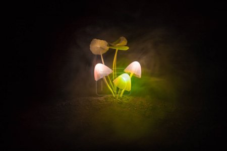 Three fantasy glowing mushrooms in