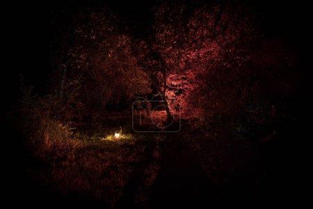 Photo pour Horreur concept Halloween. Brûler une vieille lampe à huile dans la forêt la nuit. Paysage nocturne d'une scène de cauchemar. Concentration sélective . - image libre de droit